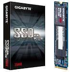 Gigabyte NVMe SSD 256 Go